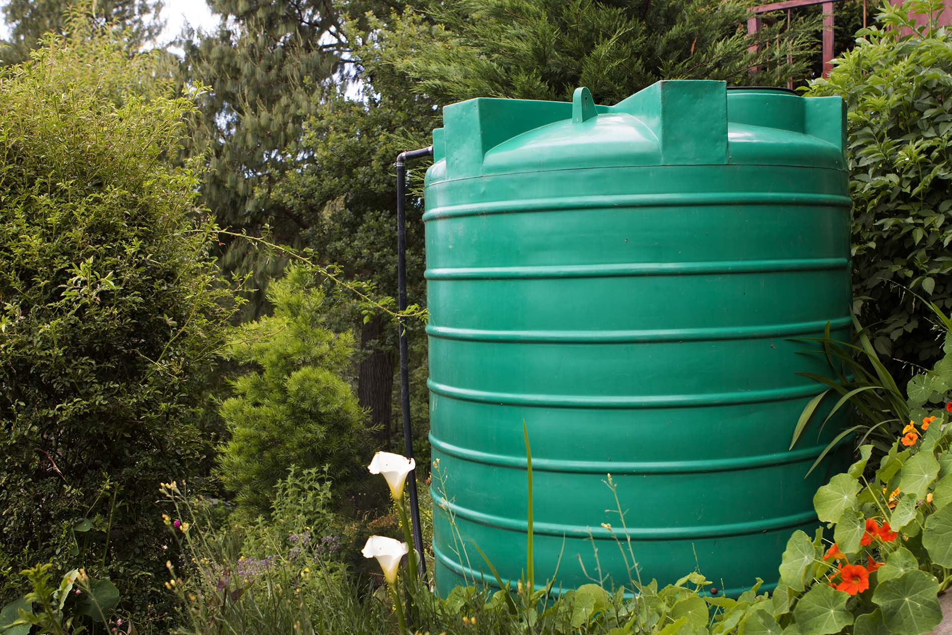 Water tank cleaning auckland